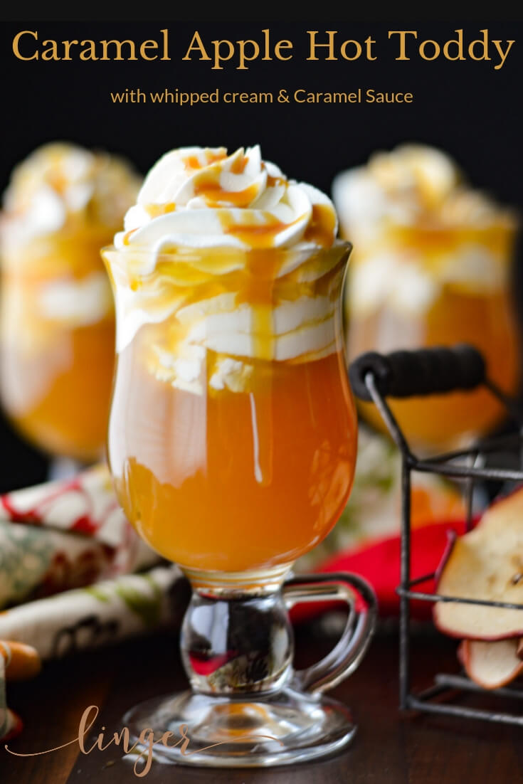 The mingling of flavors in this Hot Toddy cocktail makes it a perfect Fall drink. I've chosen apple brandy, apple cider, and a bit of caramel flavoring syrup. It is that simple. #hottoddy #cocktails #holidaycocktails #applebrandy #brandy #christmascocktails