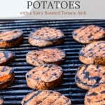 Sweet Potato Rounds are on a grill.